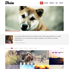 Tesla – Free Premium WordPress Theme