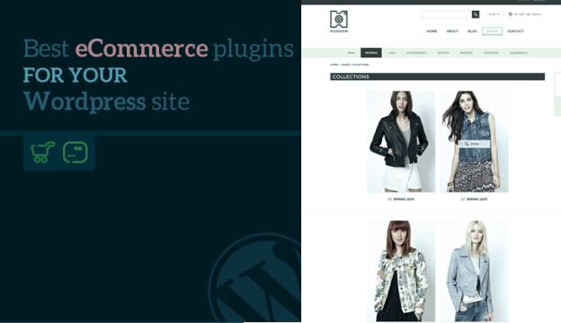Top 5 eCommerce Plugins for your WordPress Site | TeslaThemes