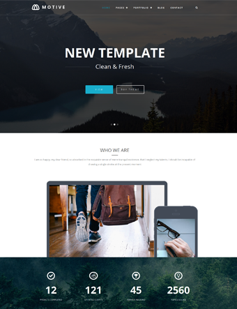 Motive wp theme